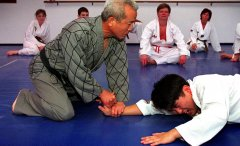Hapkido Requires Minimal Strength